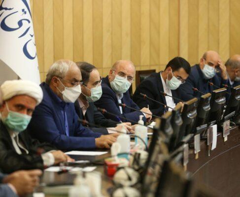 جلسه همفکری فراکسیون دانشگاهیان مجلس با حضور ریاست مجلس